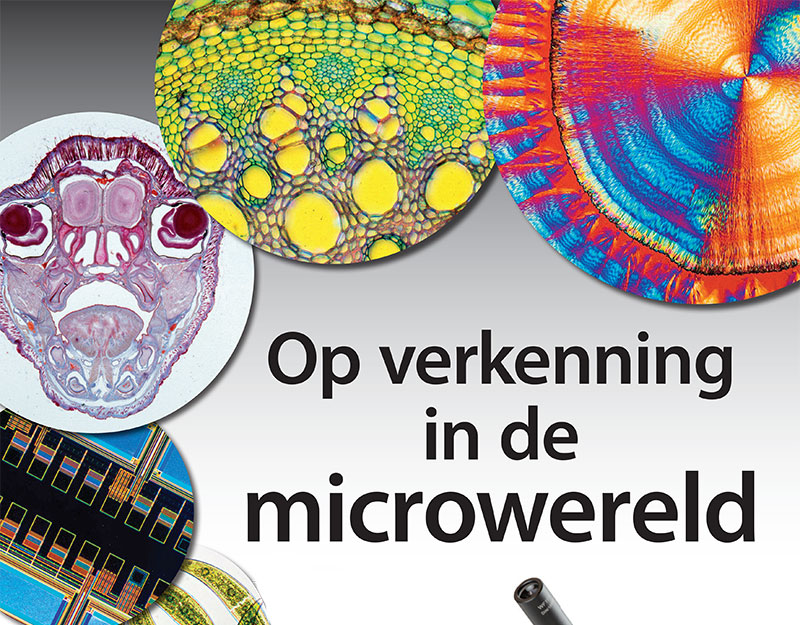 Workshop: Op verkenning in de microwereld